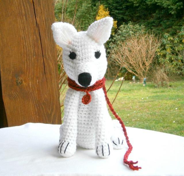 tricot chien