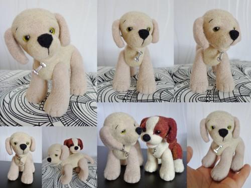 tricot laine de chien